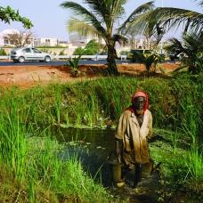 Senegal Ð Dakar Ð Construction of the Dakar-Diamniadio motorway